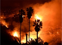 Fleeing in the dead of night, lives upended: Personal stories from Ventura fire