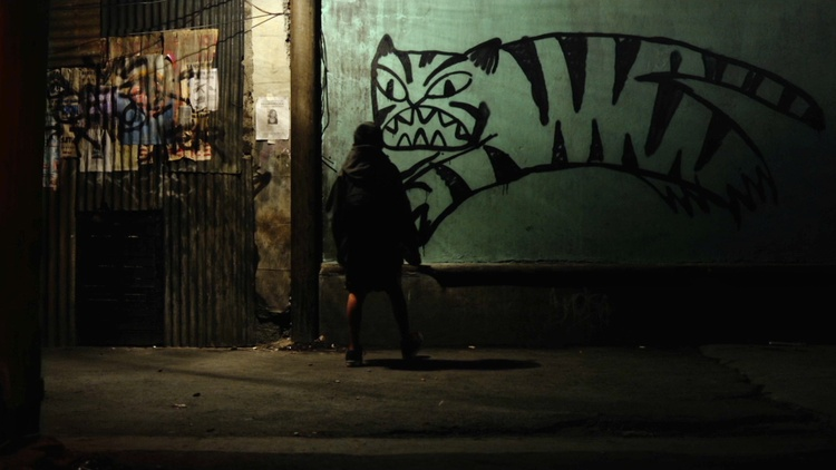For the last 13 years, Mexico's drug wars have left bodies and blood running through the streets of small cities around the country.