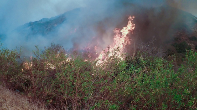Photo by  Dave Malkoff    Wildfires have been burning around Southern California for a week. Most are under control, but the Thomas Fire spread up the coast to Santa Barbara County…