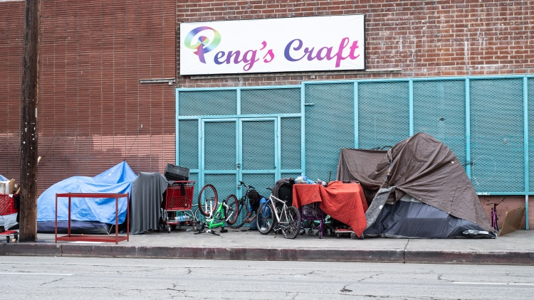 LA's homeless population grew by 16% in the city last year.