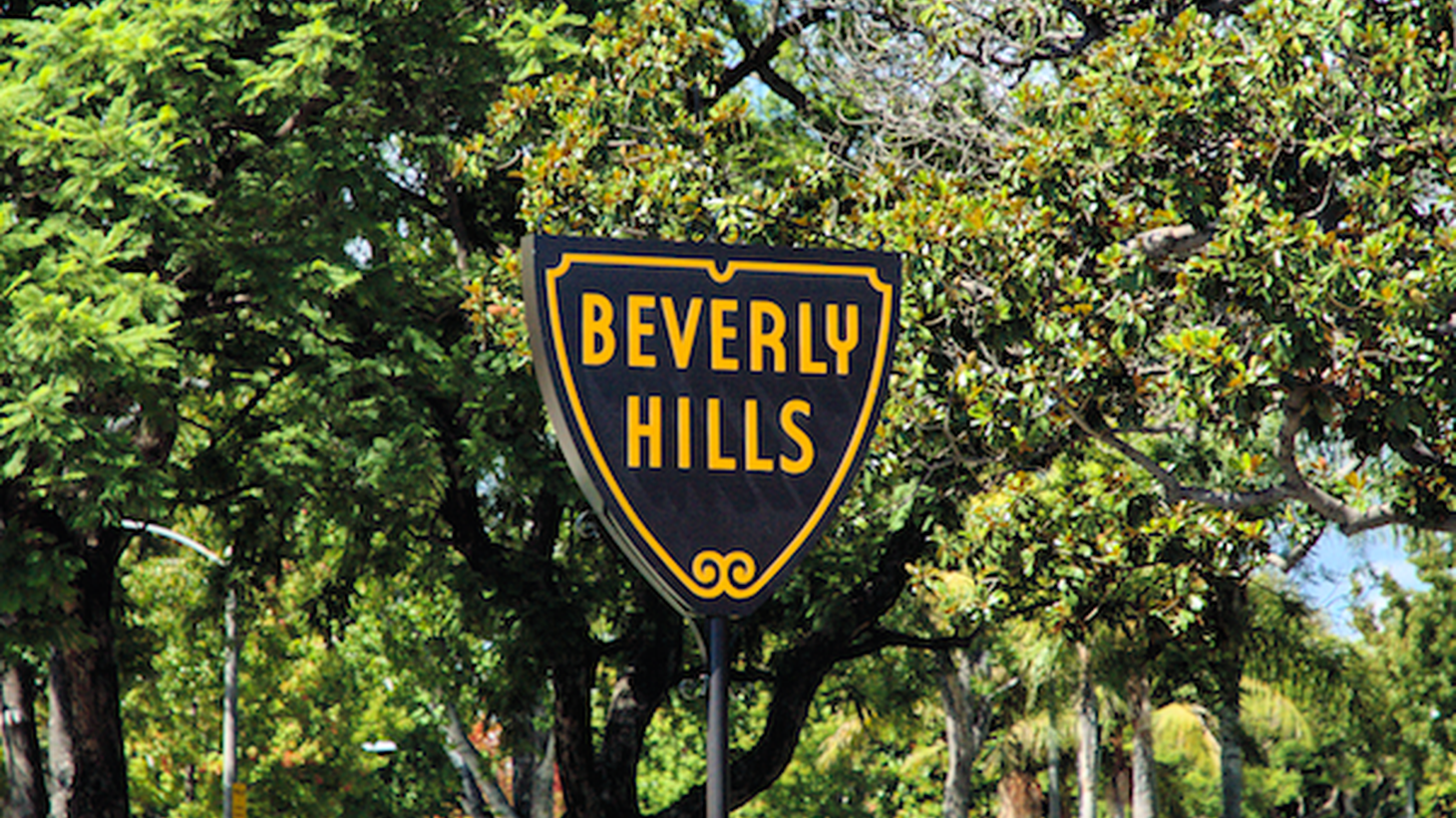 Despite its small size, the city of Beverly Hills packs a lot of political power. That's not a surprise, given the big names who live there.