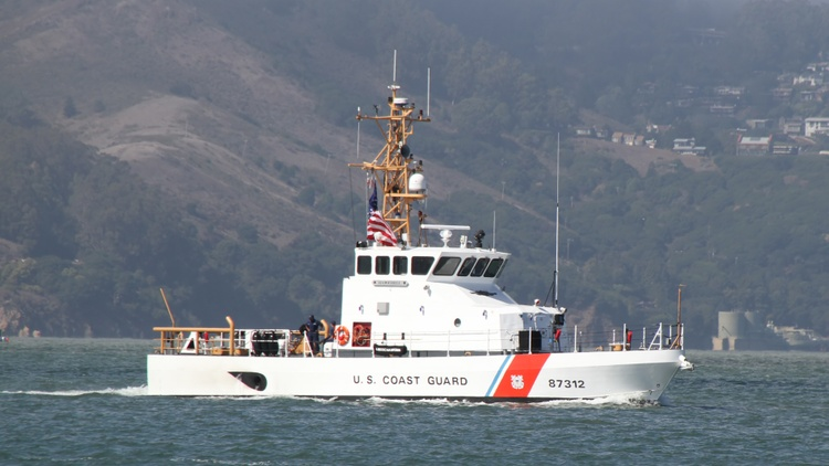 Coast Guard Lieutenant Christopher P. Hasson was arrested last week. He was a self-described white nationalist.