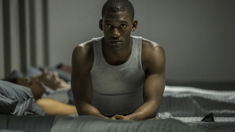 """The Netflix series """"Black Mirror"""" has a chance of snagging a few Emmys for its third season."""