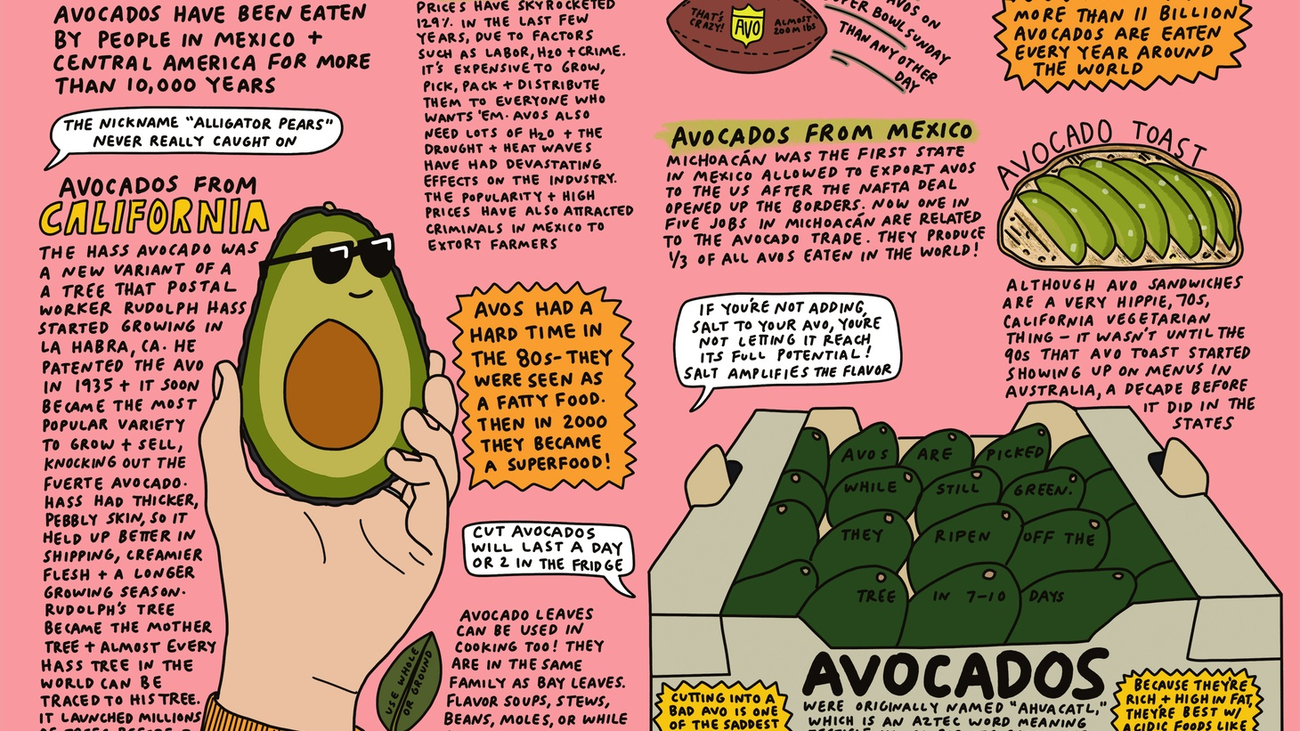 Stacy Michelson writes that avocados were considered a fatty food in the 1980s, then became a superfood in 2000.
