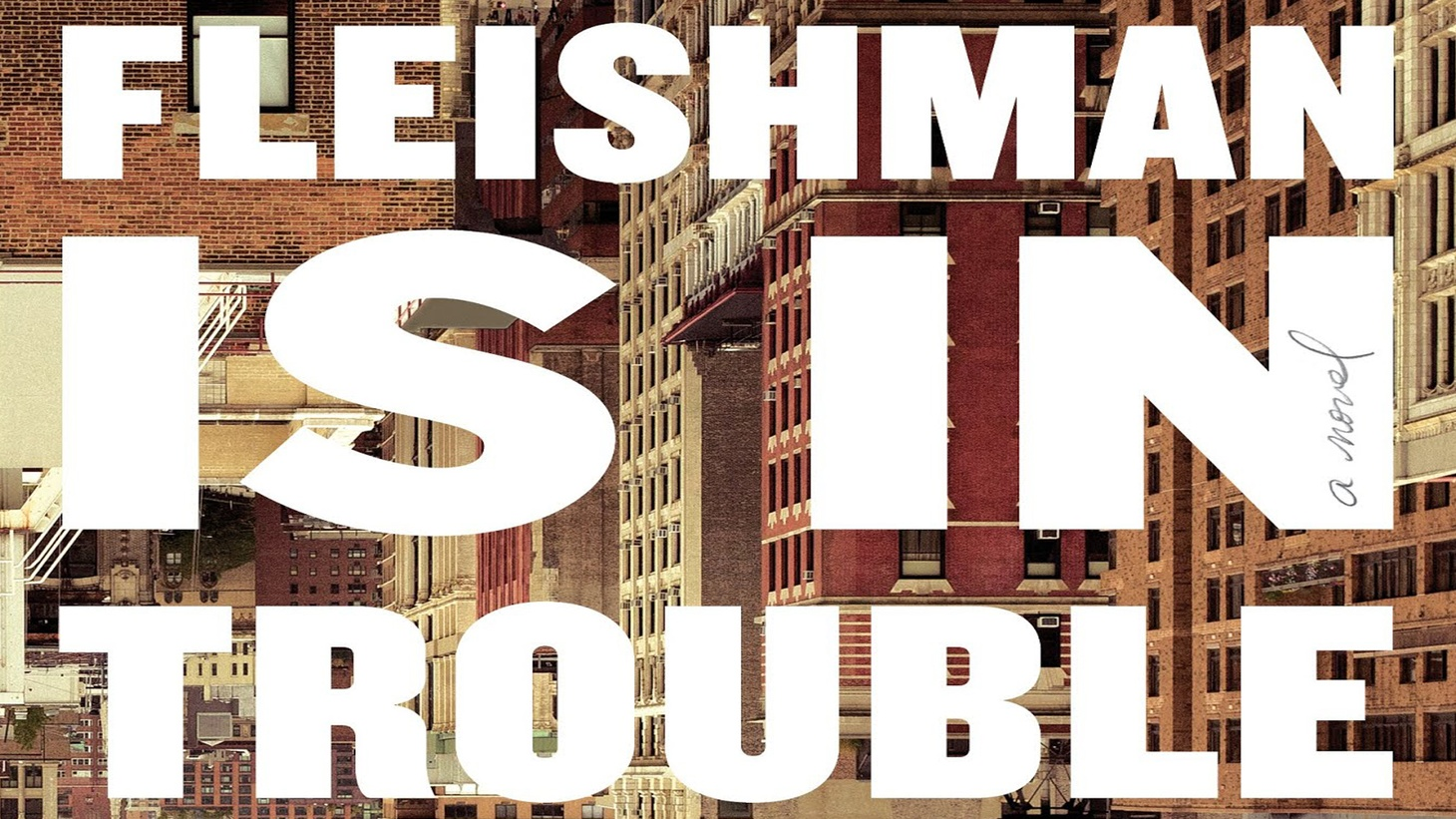 "The cover of ""Fleishman is in Trouble."""