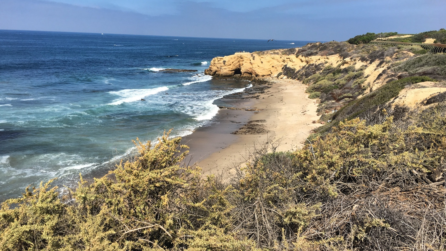 A beach along Pacific Coast Highway in Newport, Orange County. Some beaches in OC are open, and with a hot weekend coming, will people flood there and thus risk spreading COVID-19?