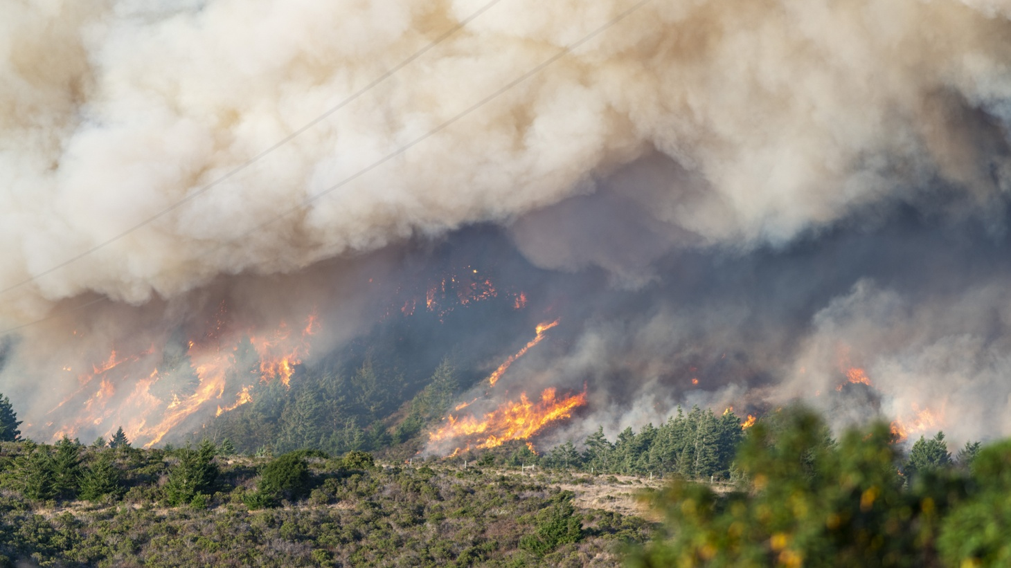 Smoke and flames rise from the mountains in Pescadero, California, United States on August 19, 2020. Multiple large lightning strikes on August 16 caused fires in southern San Mateo County and northern Santa Cruz County.