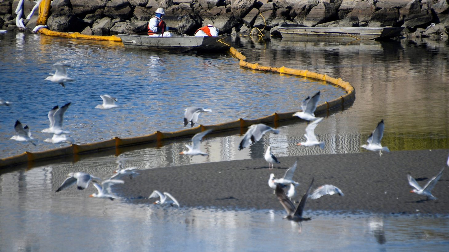 A clean-up team works on clearing the oil slicks at the Talbert Channel after a major oil spill off the coast of California has come ashore in Huntington Beach, California, U.S. October 3, 2021.