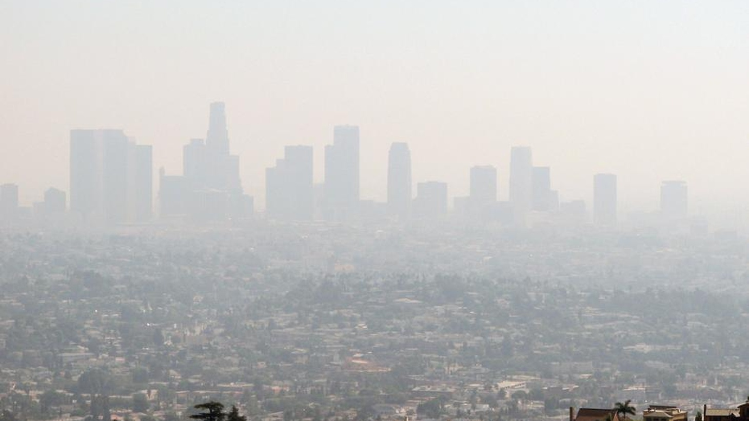 How bad is the air in LA? Is there a better way to handle TV pilot season? Why are conservatives fighting for free speech? And should Kobe call it quits?