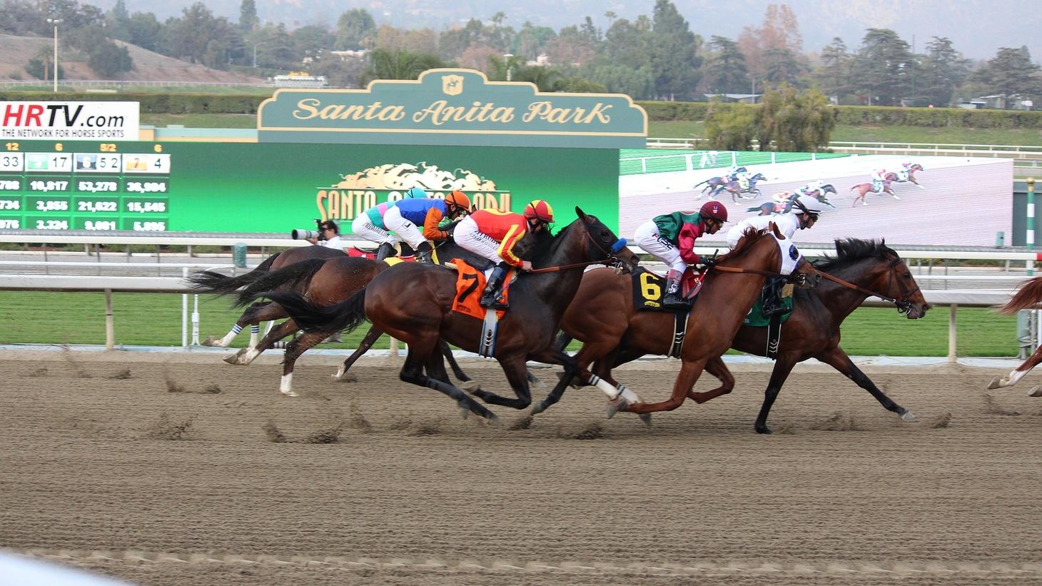 Horse racing at Santa Anita Park.