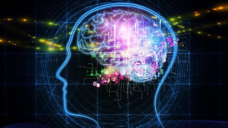 Brain health.