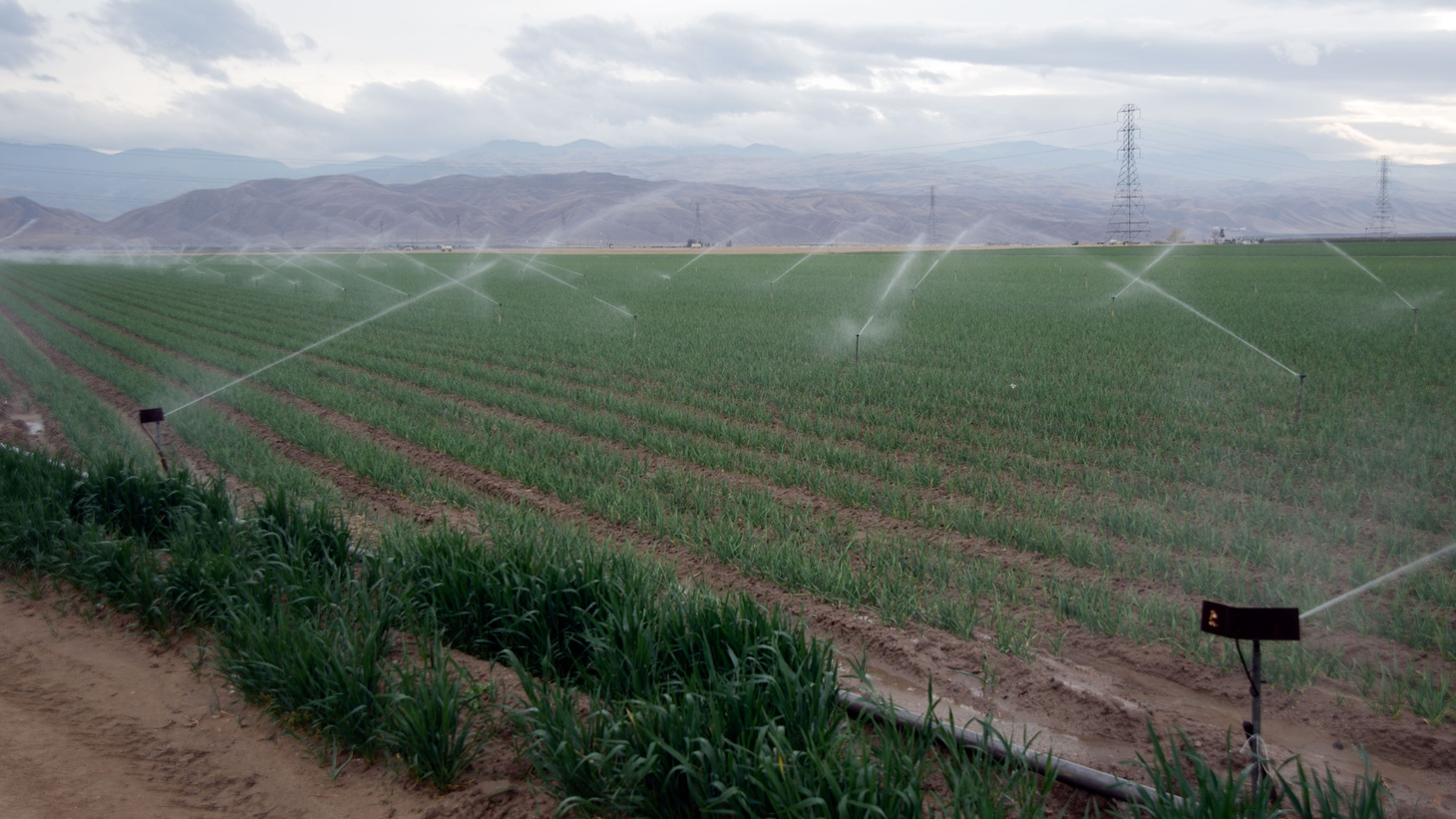 Amid ongoing drought, California gives local water providers control over water restrictions. Meanwhile, the US military considers climate change a threat to national security.