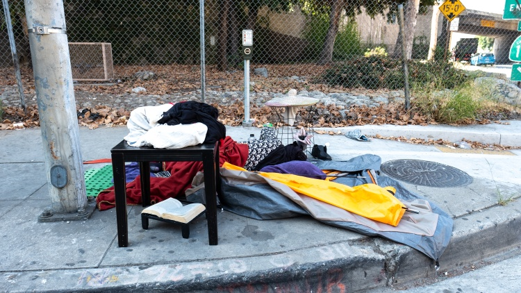 Trump says he wants to help California's homeless