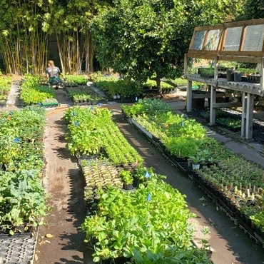 Evan Kleiman thinks that gardening feels a lot like cooking. You mix soil with compost or fertilizer and put it in pots, then add the main ingredient, the plant.