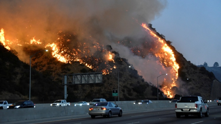 The Getty Fire has burned more than 650 acres, and is only 5% contained as of this morning.