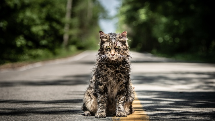 """Our critics review """"Pet Sematary,"""" a remake of the 1989 film and based on a Stephen King novel of the same name; """"The Haunting of Sharon Tate,"""" based on the famous Tate murders carried…"""
