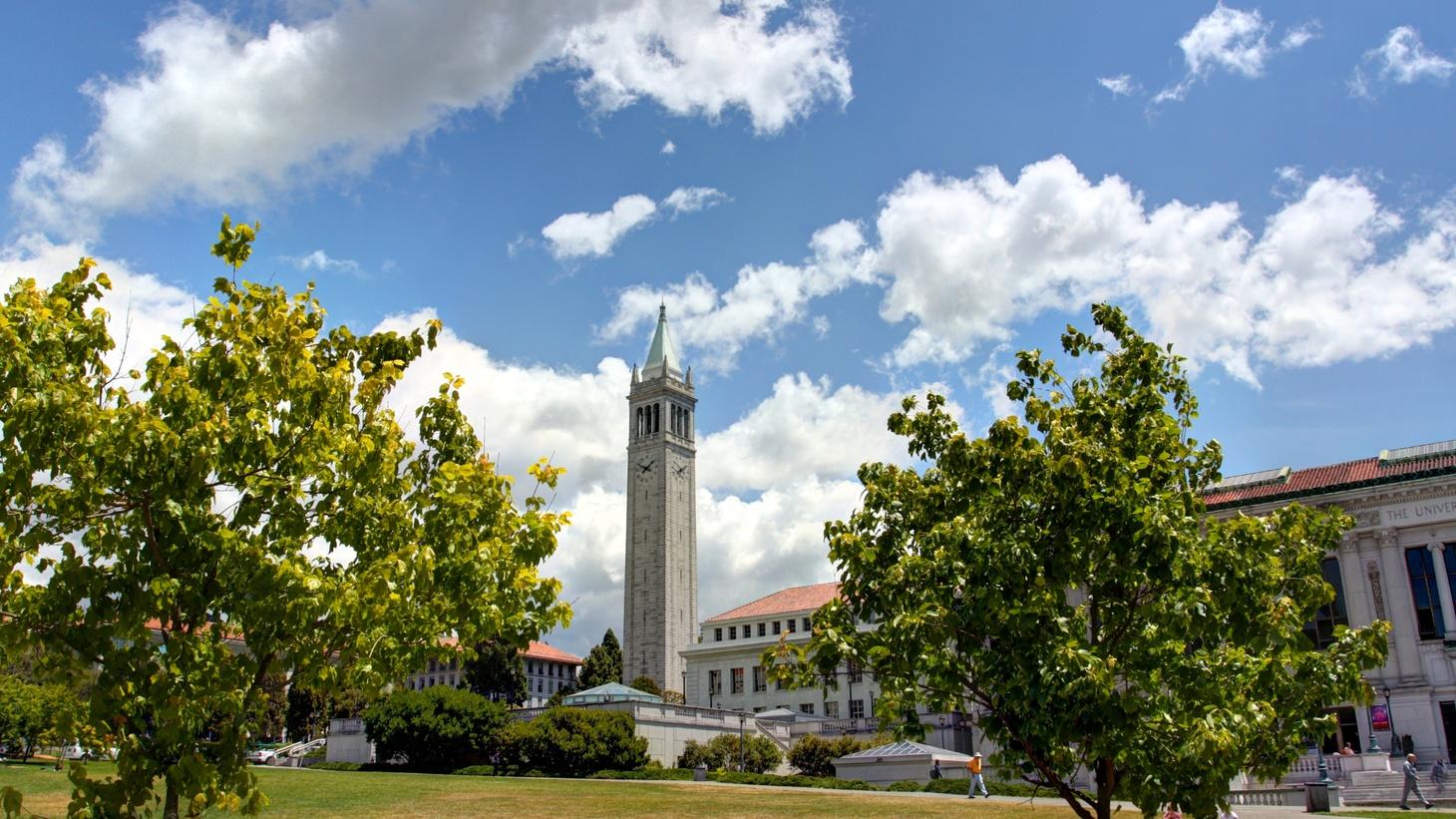 Scenes from UC Berkeley - Memorial Glade.