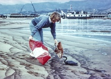 50 years after a massive spill, Santa Barbara remains tied to oil