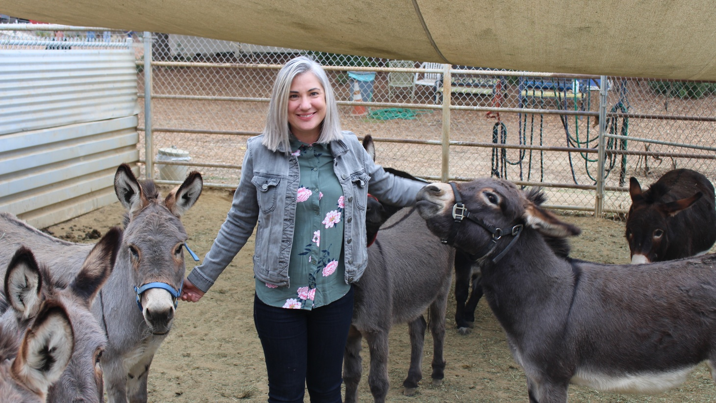 Franki Williams with donkeys evacuated from Malibu.