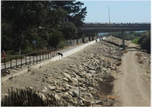 An aging Ventura levee at risk of collapse