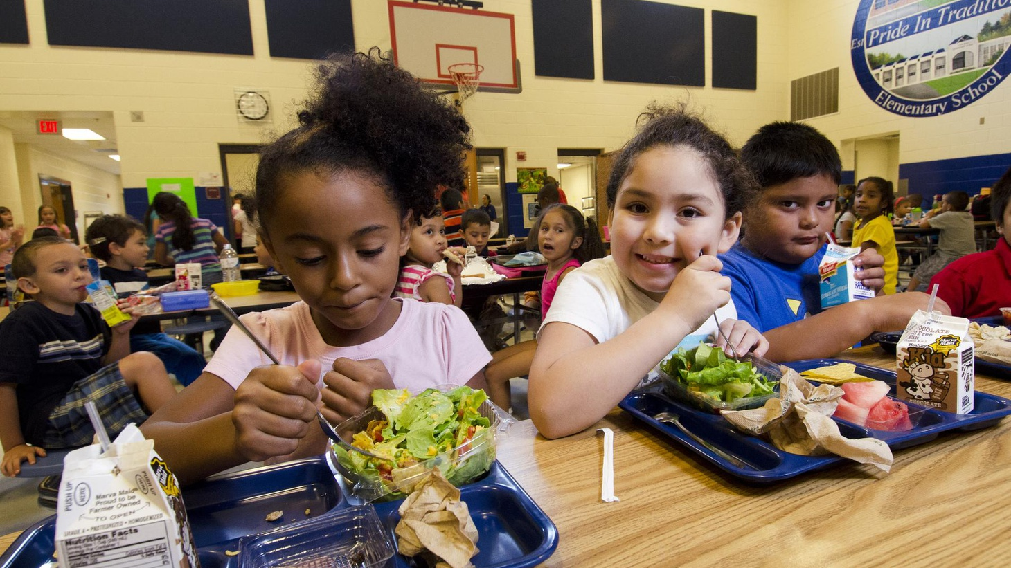 Americans are eating the wrong foods, with and obesity now a pandemic. But efforts to improve nutrition have created a furor over the role of government in our lives.