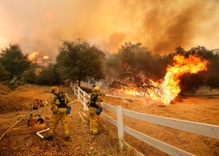 Can President Trump's Climate Change Denial Survive Massive Wildfires?
