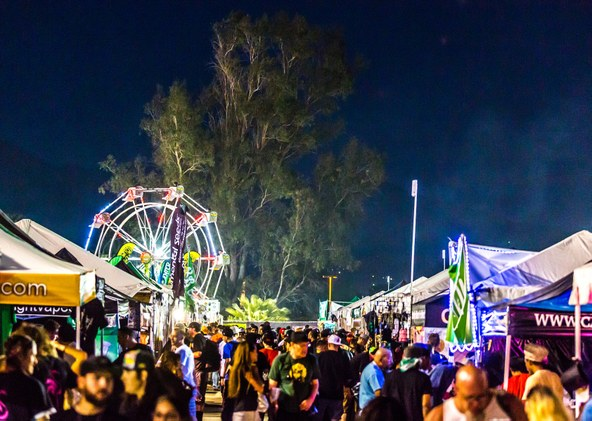 CannabisCup-rect-CannabisReports.jpg