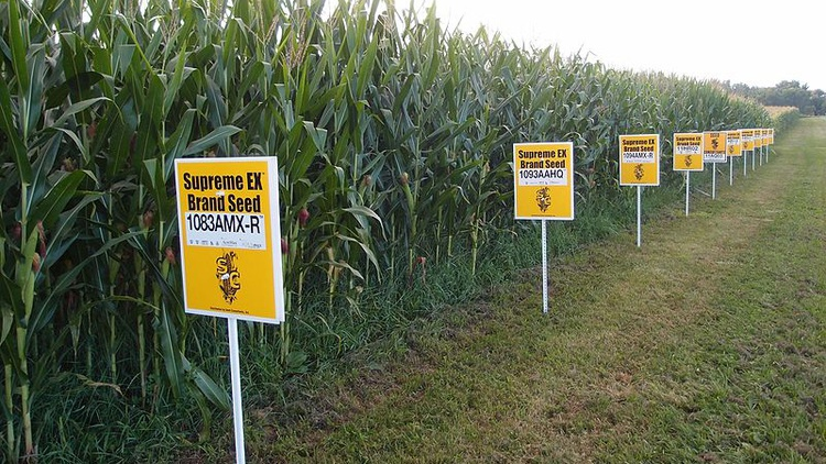 Science and ideology are in conflict in Europe, as many nations have accepted the science of climate change but are rejecting the science of genetically modified organisms, or GMO's.