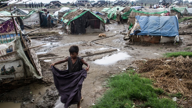 Photo by  Steve Gumaer   