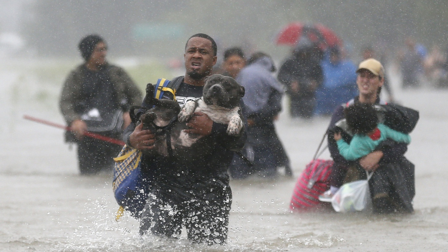 In Texas, some 13 million people live in zones either flooded already or under flood watch — with one trillion gallons of water inundating Harris County in just four days. The rain continues to set national records and floodwaters are still rising. Rescue efforts may last for weeks into the future.