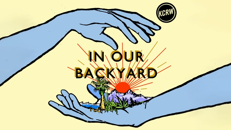 Introducing 'In Our Backyard'
