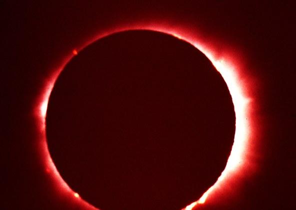 Eclipse-rect-ToddPetit.jpg