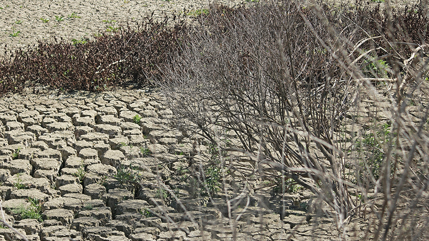 Farmers in the Central Valley are pumping so much underground water that roads and canals are cracking and bridges may be in danger. Beneath the surface, natural reservoirs are collapsing, and there'll be no way to restore them, even if the drought should suddenly come to an end.