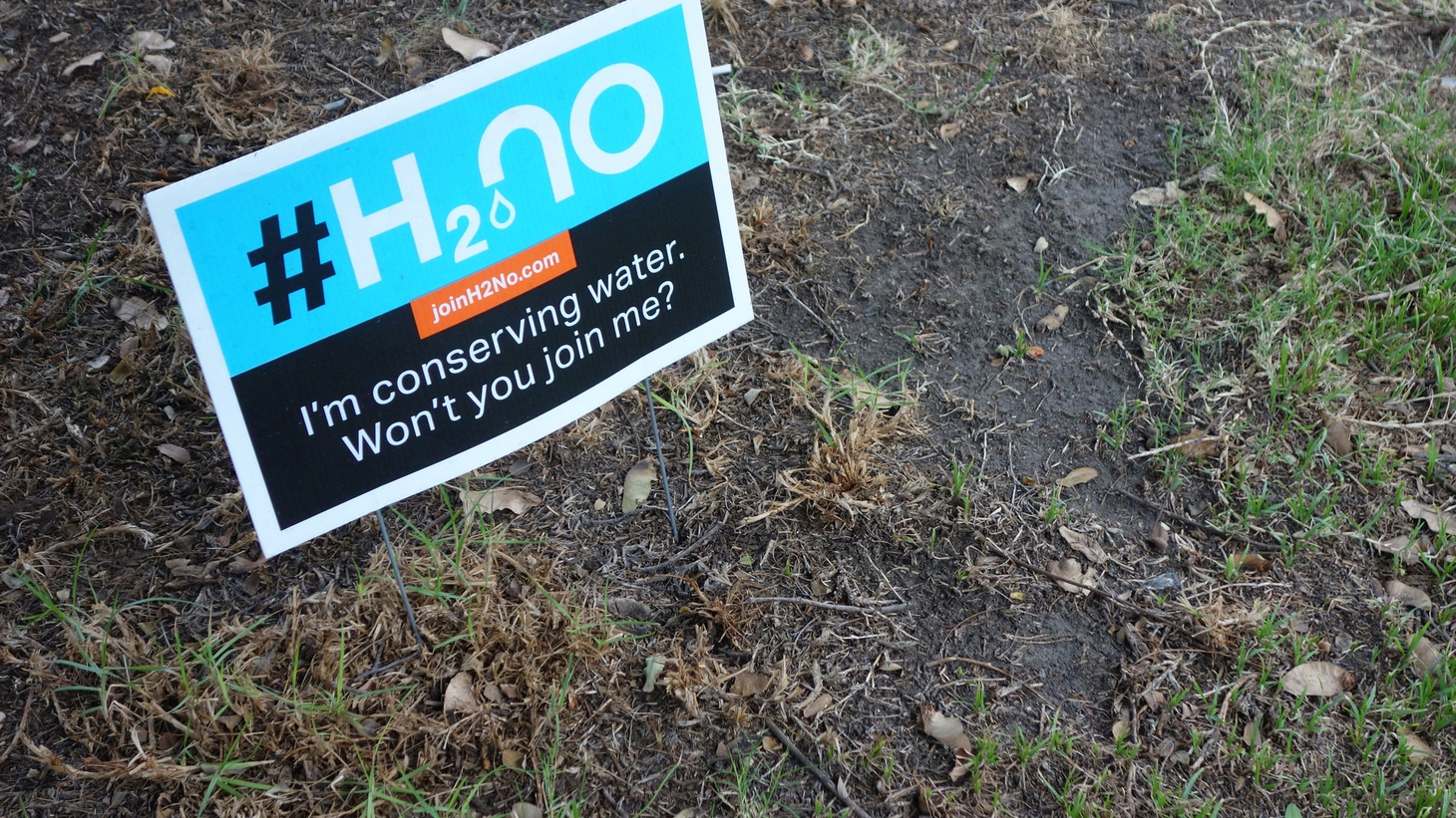 Climate change and a shortage of water will change California in many ways — including the way it looks. Now that Governor Brown has ordered 25% cutbacks in urban areas, one imminent casualty is the green, grassy lawn.