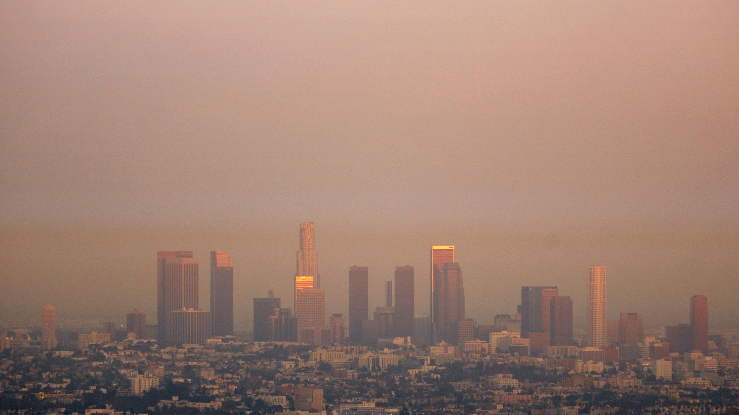 There has been progress, but LA is still the nation's smoggiest city, and 91% of Californians breath air that is dangerously polluted. That finding by the American Lung Association pits it against efforts to relax environmental laws during the economic recession. Also, efforts to delay Governor Schwarzenegger's attack on global warming. On our rebroadcast of To the Point, Arizona officials claim federal inaction required the state to crack down on illegal immigration.