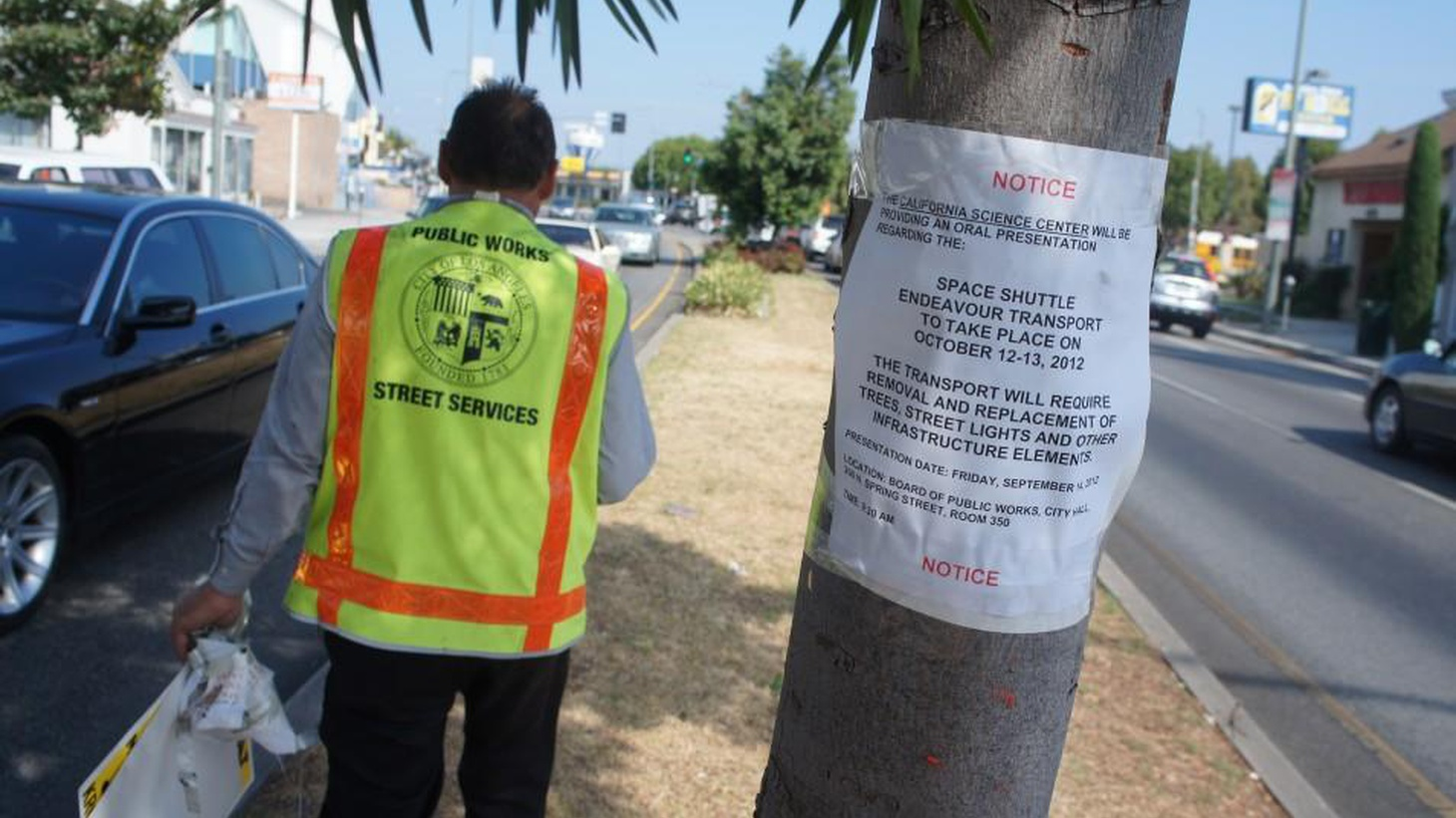 Hundreds of tall old trees in LA and Inglewood are being cut down to make way for the Space Shuttle Endeavour to travel from LAX to Exposition Park. Is it worth the sacrifice?