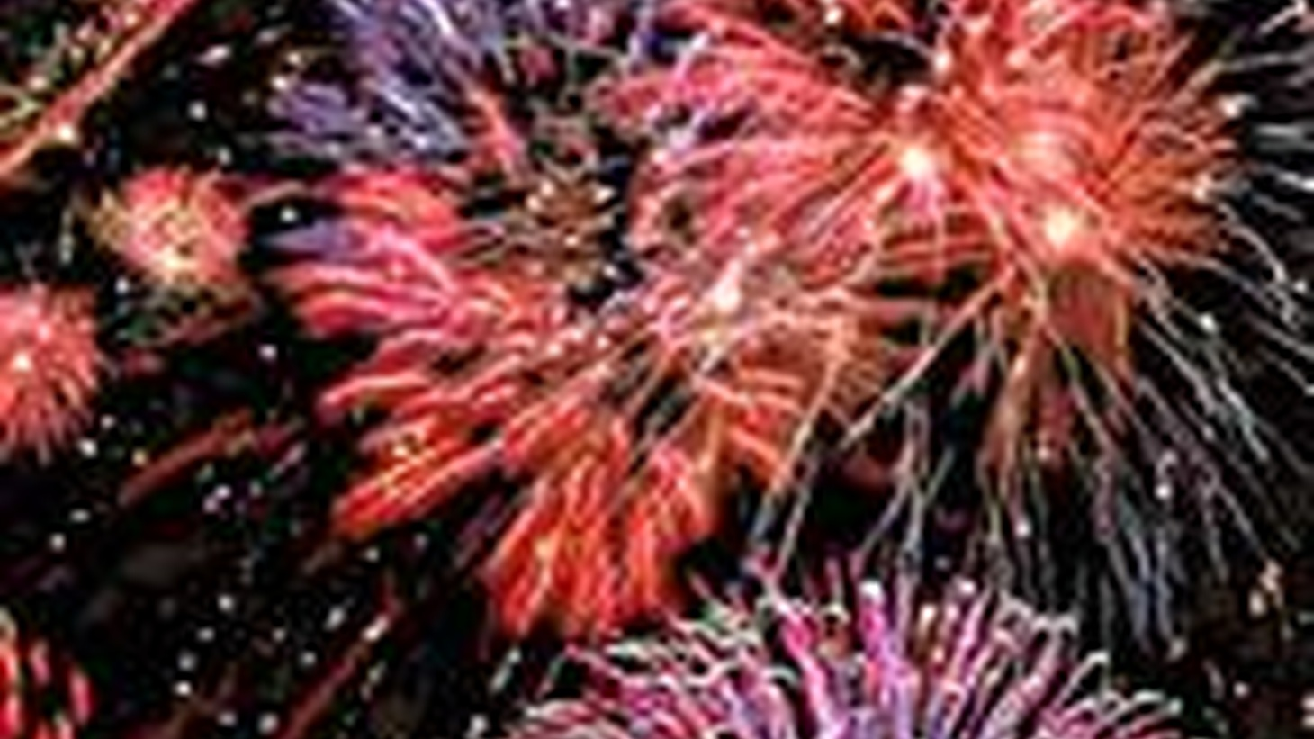 The City of LA is prepared to cancel any display of fireworks right up to the last minute and one scientist says there should not be any at all. Also, Mayor Villaraigosa makes a public announcement. On Reporter's Notebook, is Governor Schwarzenegger's global warming effort in trouble?