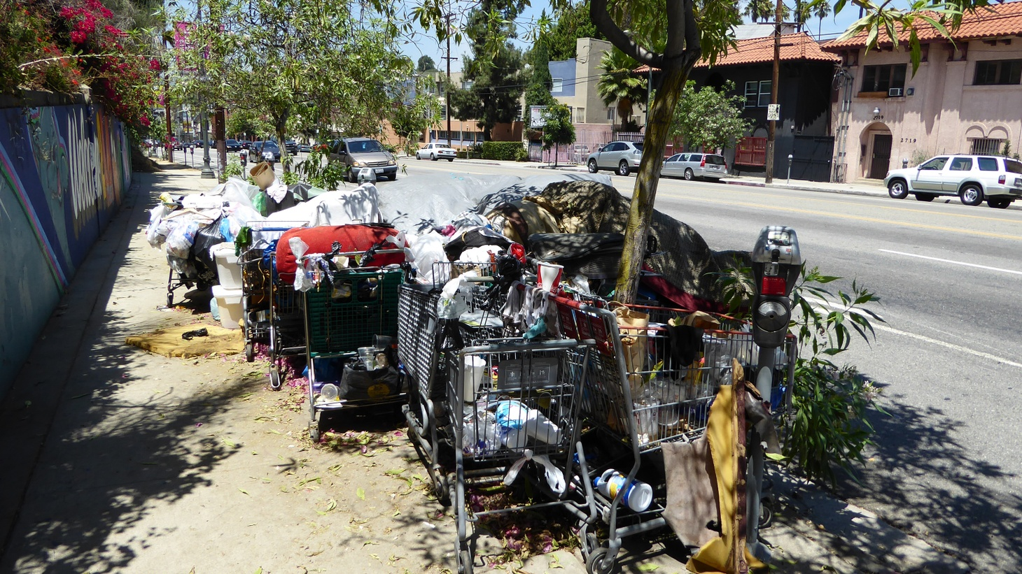 "The LA City Council finally came through today on a promise made eight weeks ago to the homeless — declaring a ""shelter crisis."" But property owners in Venice are among those angry because of provisions that ""decriminalize"" homelessness to protect federal funding, and the council still doesn't know where to find $100 million to provide shelters and build new housing."