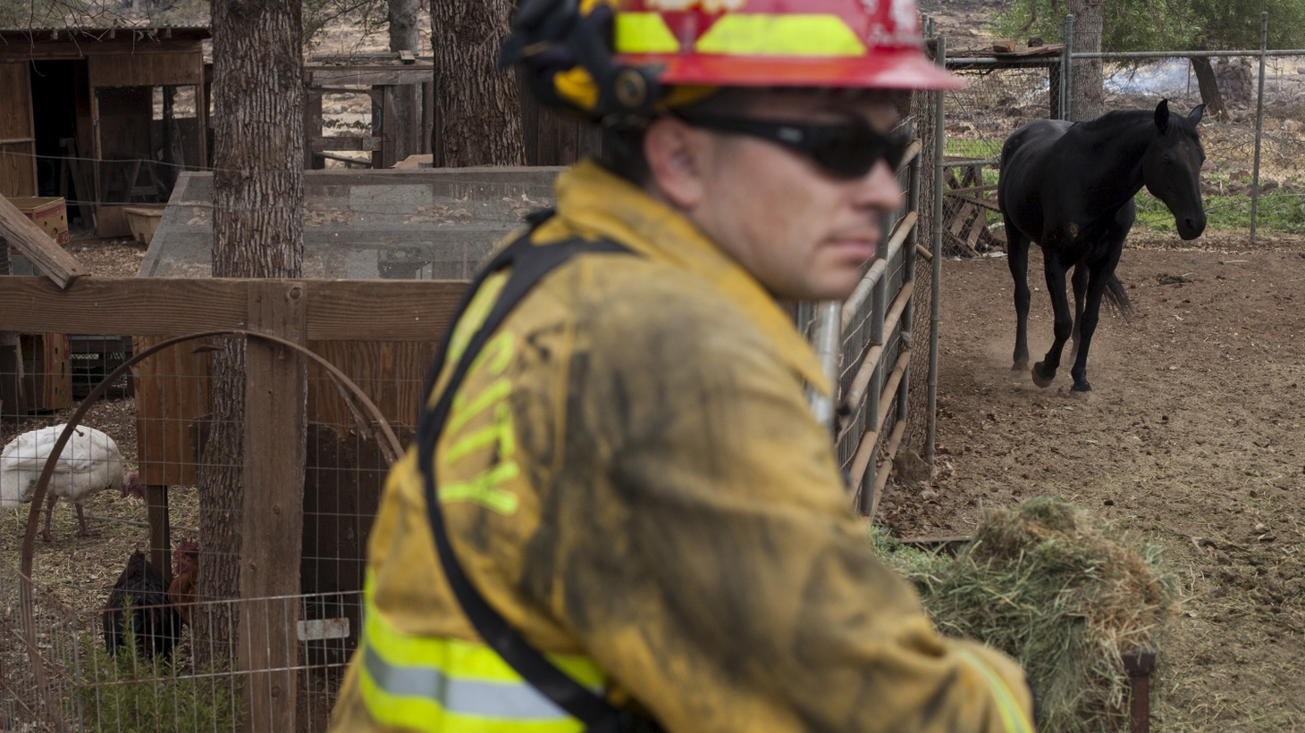 Two men who refused to evacuate are among the casualties in several counties…so far. Escorts are being provided for others who want to return home — some hoping that animals, including pets, will still be alive.