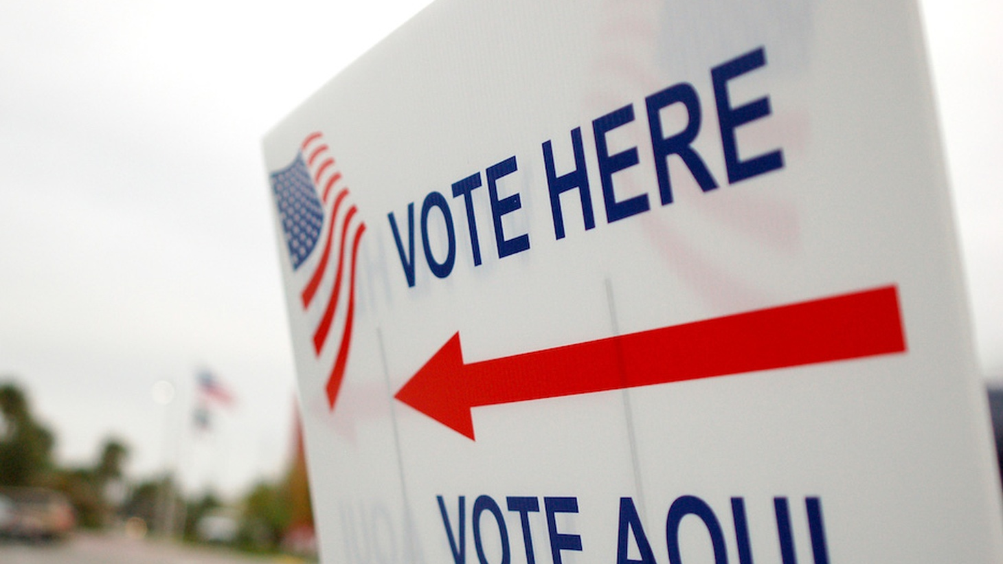 Voting is fundamental to a democratic society, but millions of California residents can't cast ballots because they aren't citizens. Joe Mathews says the state would benefit from their participation in electoral politics.